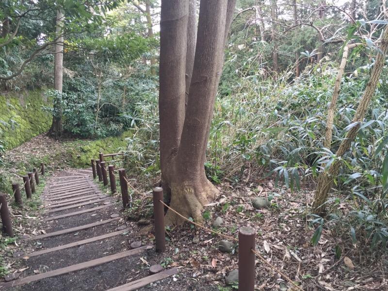金沢城公園・玉泉院丸庭園への道