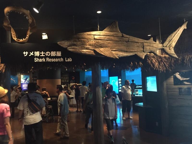 美ら海水族館(その21)