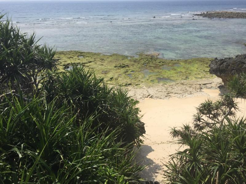 海洋博公園(その12)