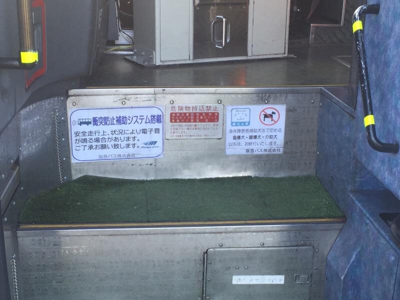 元阪急バスの、やんばる急行バス ステップ