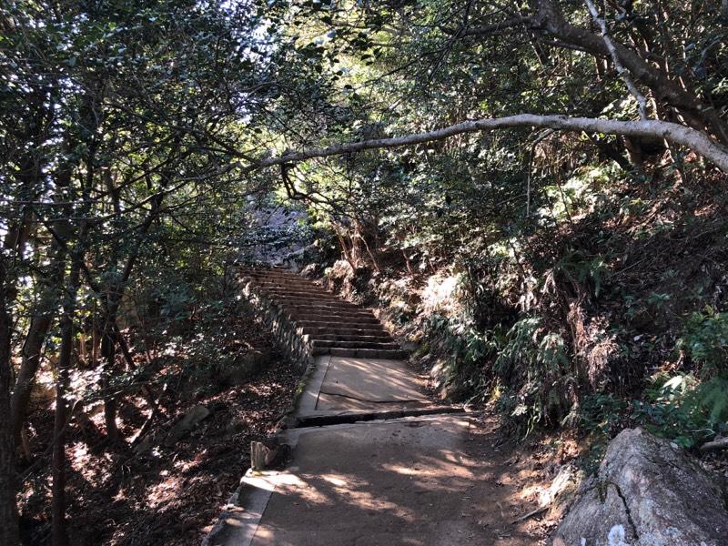 登山道の光景