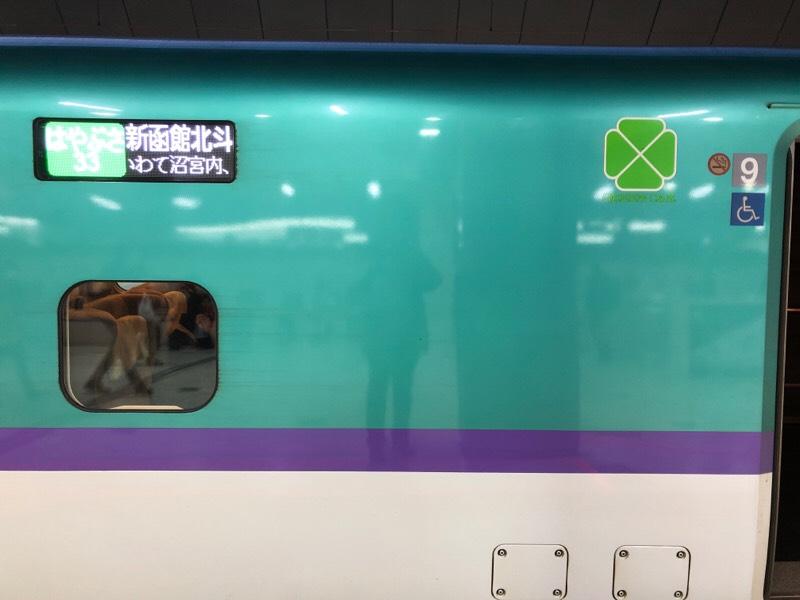 東北新幹線 H5系 グリーン車